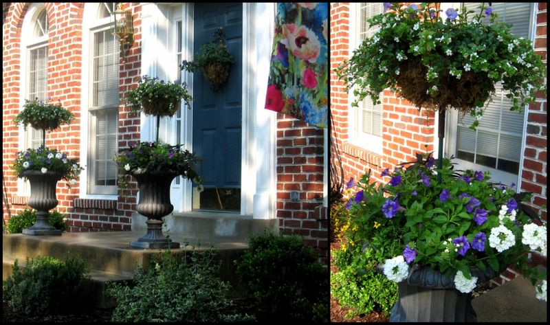 Front porch collage