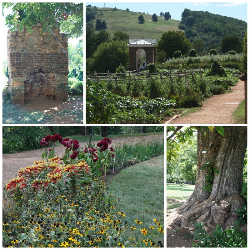 Monticello collage 3