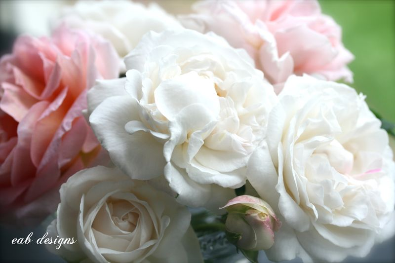 English garden roses bouquet 3