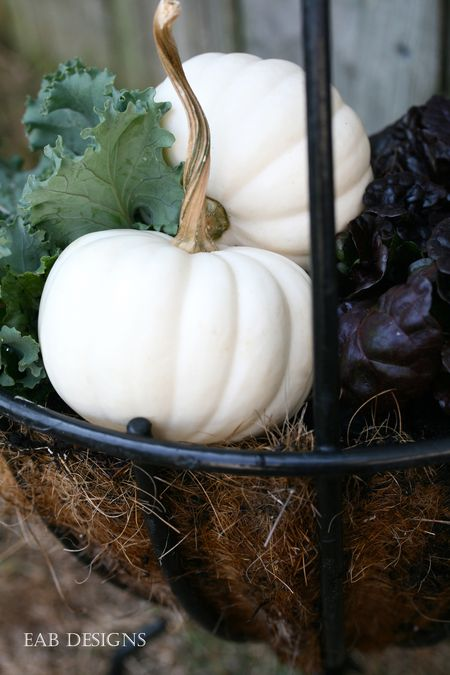 EAB DESIGNS fall containers 2