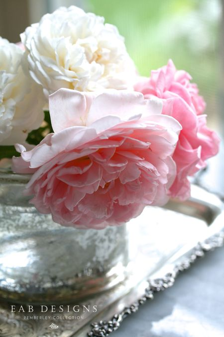 EAB DESIGNS English Garden Roses 1
