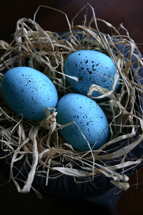 Easter Eggs Robin's Egg Blue